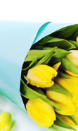 Download free mobile wallpaper 18737: Bouquets, Flowers, Background, Easter, Holidays, Tulips for phone or tab. Download images, backgrounds and wallpapers for mobile phone for free.