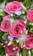Download free mobile wallpaper 27527: Bouquets, Flowers, Background, Plants, Roses for phone or tab. Download images, backgrounds and wallpapers for mobile phone for free.
