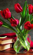 Download free mobile wallpaper 23972: Bouquets, Flowers, Books, Still life, Objects, Plants, Tulips for phone or tab. Download images, backgrounds and wallpapers for mobile phone for free.