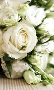 Download free mobile wallpaper 22203: Bouquets, Flowers, Objects, Plants, Roses for phone or tab. Download images, backgrounds and wallpapers for mobile phone for free.