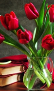 Download free mobile wallpaper 37913: Bouquets,Flowers,Plants,Tulips for phone or tab. Download images, backgrounds and wallpapers for mobile phone for free.