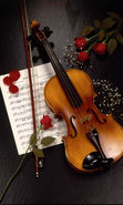 Download free mobile wallpaper 21786: Flowers, Tools, Violins, Music, Objects, Roses for phone or tab. Download images, backgrounds and wallpapers for mobile phone for free.