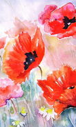 Download free mobile wallpaper 17185: Flowers, Poppies, Plants, Pictures for phone or tab. Download images, backgrounds and wallpapers for mobile phone for free.