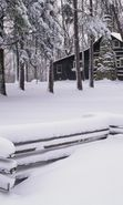 Download free mobile wallpaper 8254: Landscape, Winter, Houses, Trees for phone or tab. Download images, backgrounds and wallpapers for mobile phone for free.