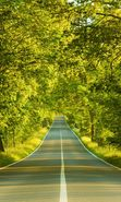 Download free mobile wallpaper 28711: Trees, Roads, Landscape for phone or tab. Download images, backgrounds and wallpapers for mobile phone for free.