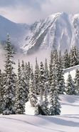 Download free mobile wallpaper 7624: Landscape, Winter, Trees, Mountains, Fir-trees for phone or tab. Download images, backgrounds and wallpapers for mobile phone for free.