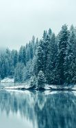 Download free mobile wallpaper 26052: Trees, Fir-trees, Landscape, Rivers, Snow, Winter for phone or tab. Download images, backgrounds and wallpapers for mobile phone for free.