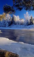 Download free mobile wallpaper 1299: Landscape, Winter, Rivers, Trees, Snow for phone or tab. Download images, backgrounds and wallpapers for mobile phone for free.