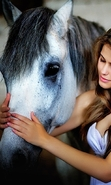 Download free mobile wallpaper 46583: Girls,Horses,People,Animals for phone or tab. Download images, backgrounds and wallpapers for mobile phone for free.