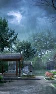 Rain Mobile Wallpapers Download Free Rain Wallpapers For Mobile Phones Page 1