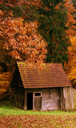 Download free mobile wallpaper 33956: Houses,Autumn,Landscape for phone or tab. Download images, backgrounds and wallpapers for mobile phone for free.