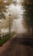 Download free mobile wallpaper 17660: Roads, Autumn, Landscape for phone or tab. Download images, backgrounds and wallpapers for mobile phone for free.
