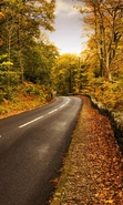 Download free mobile wallpaper 34867: Roads,Autumn,Landscape for phone or tab. Download images, backgrounds and wallpapers for mobile phone for free.