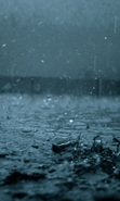 Download free mobile wallpaper 32254: Rain,Background,Drops for phone or tab. Download images, backgrounds and wallpapers for mobile phone for free.