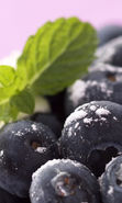 Download free mobile wallpaper 2176: Fruits, Food, Bilberries, Berries for phone or tab. Download images, backgrounds and wallpapers for mobile phone for free.