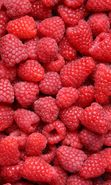 Download free mobile wallpaper 16146: Food, Background, Fruits, Berries, Raspberry for phone or tab. Download images, backgrounds and wallpapers for mobile phone for free.