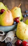 Download free mobile wallpaper 19759: Food, Fruits, Pears, Still life for phone or tab. Download images, backgrounds and wallpapers for mobile phone for free.