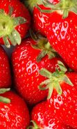 Download free mobile wallpaper 21969: Food, Fruits, Strawberry for phone or tab. Download images, backgrounds and wallpapers for mobile phone for free.