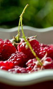 Download free mobile wallpaper 28512: Food, Fruits, Raspberry for phone or tab. Download images, backgrounds and wallpapers for mobile phone for free.