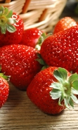 Download free mobile wallpaper 45014: Food,Strawberry for phone or tab. Download images, backgrounds and wallpapers for mobile phone for free.