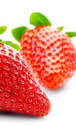 Download free mobile wallpaper 3567: Plants, Food, Strawberry for phone or tab. Download images, backgrounds and wallpapers for mobile phone for free.