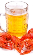 Download free mobile wallpaper 35551: Food,Drinks,Beer for phone or tab. Download images, backgrounds and wallpapers for mobile phone for free.