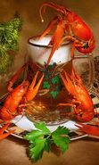 Download free mobile wallpaper 42792: Food,Beer,Crayfish for phone or tab. Download images, backgrounds and wallpapers for mobile phone for free.