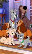 Download free mobile wallpaper 16362: Lady and the Tramp, Cartoon, Dogs for phone or tab. Download images, backgrounds and wallpapers for mobile phone for free.