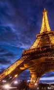 Download free mobile wallpaper 22883: Eiffel Tower, Cities, Night, Paris, Landscape for phone or tab. Download images, backgrounds and wallpapers for mobile phone for free.