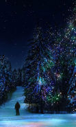 Download free mobile wallpaper 20995: Fir-trees, New Year, Holidays, Christmas, Xmas, Winter for phone or tab. Download images, backgrounds and wallpapers for mobile phone for free.