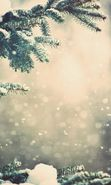 Download free mobile wallpaper 20137: Fir-trees, Landscape, Plants, Snow, Winter for phone or tab. Download images, backgrounds and wallpapers for mobile phone for free.