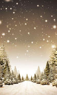 Download free mobile wallpaper 19372: Fir-trees, Landscape, Snow, Winter for phone or tab. Download images, backgrounds and wallpapers for mobile phone for free.