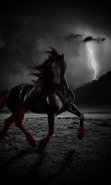 Download free mobile wallpaper 35785: Fantasy,Horses,Animals for phone or tab. Download images, backgrounds and wallpapers for mobile phone for free.