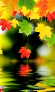 Download free mobile wallpaper 33652: Background,Leaves,Autumn for phone or tab. Download images, backgrounds and wallpapers for mobile phone for free.