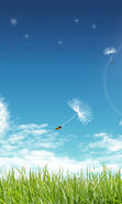 Download free mobile wallpaper 16592: Background, Sky, Dandelions, Grass for phone or tab. Download images, backgrounds and wallpapers for mobile phone for free.