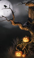 Download free mobile wallpaper 13182: Halloween, Holidays, Pumpkin for phone or tab. Download images, backgrounds and wallpapers for mobile phone for free.