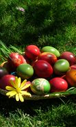Download free mobile wallpaper 14438: Eggs, Easter, Holidays for phone or tab. Download images, backgrounds and wallpapers for mobile phone for free.