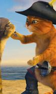 Download free mobile wallpaper 5393: Cartoon, Cats, Shrek for phone or tab. Download images, backgrounds and wallpapers for mobile phone for free.