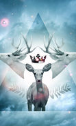 Download free mobile wallpaper 22948: Universe, Deers, Landscape, Animals, Stars for phone or tab. Download images, backgrounds and wallpapers for mobile phone for free.