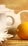 Download free mobile wallpaper 43631: Lemons,Objects,Camomile for phone or tab. Download images, backgrounds and wallpapers for mobile phone for free.