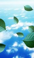 Download free mobile wallpaper 24432: Leaves, Sky, Clouds, Landscape, Plants for phone or tab. Download images, backgrounds and wallpapers for mobile phone for free.