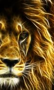 Download free mobile wallpaper 44368: Lions,Animals for phone or tab. Download images, backgrounds and wallpapers for mobile phone for free.