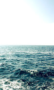 Download free mobile wallpaper 20762: Sea, Landscape, Waves for phone or tab. Download images, backgrounds and wallpapers for mobile phone for free.