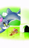 Download free mobile wallpaper 20013: Cartoon, Tom and Jerry, Pictures for phone or tab. Download images, backgrounds and wallpapers for mobile phone for free.