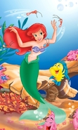 Download free mobile wallpaper 31083: Cartoon,The Little Mermaid for phone or tab. Download images, backgrounds and wallpapers for mobile phone for free.