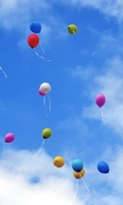 Download free mobile wallpaper 48992: Sky,Objects,Landscape,Balloons for phone or tab. Download images, backgrounds and wallpapers for mobile phone for free.