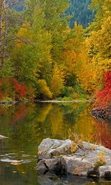 Download free mobile wallpaper 35292: Autumn,Landscape,Rivers for phone or tab. Download images, backgrounds and wallpapers for mobile phone for free.