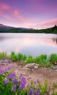 Download free mobile wallpaper 49683: Lakes,Landscape,Nature for phone or tab. Download images, backgrounds and wallpapers for mobile phone for free.