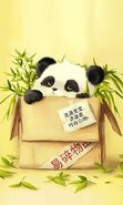 Download free mobile wallpaper 18073: Pandas, Pictures, Animals for phone or tab. Download images, backgrounds and wallpapers for mobile phone for free.