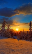 Download free mobile wallpaper 45582: Landscape,Nature,Snow,Sunset,Winter for phone or tab. Download images, backgrounds and wallpapers for mobile phone for free.